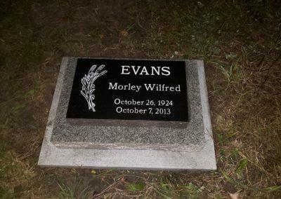 Evans(1)-W1000