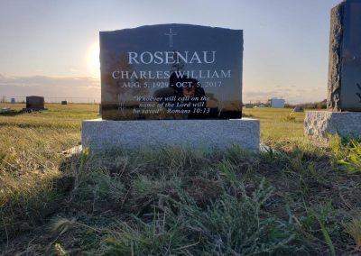 ROSENAU-W1000