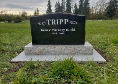 TRIPP-W1000
