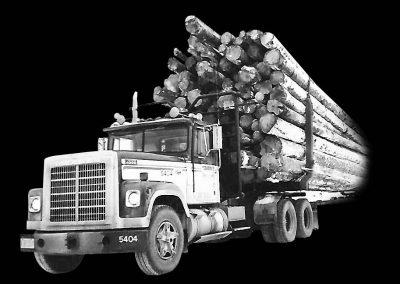 Z-CHARNEY Truck(9x6)