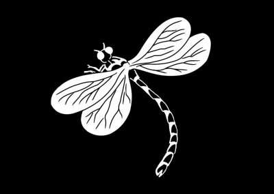 Z-DOUCETTE-Dragon Fly (3p5x3p5) R4