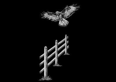 Z-GUINDON-Hawk(6p4033x11p633)