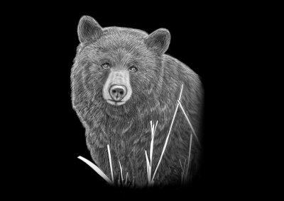 Z-MUSTUS-Bear(5p406x6p767)
