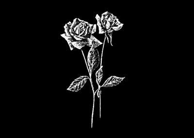 Z - NELMES - Rose (4p423x7p733) R8