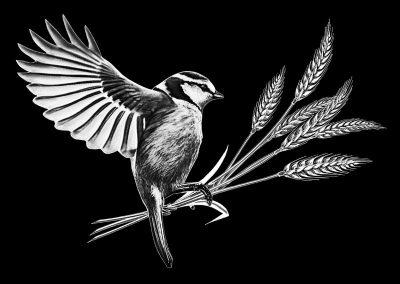 Z-PEARSON - Bird (7p727x5p5) R4