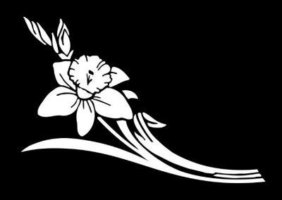 Z-THOMPSON - Flower (7p5x5) R4