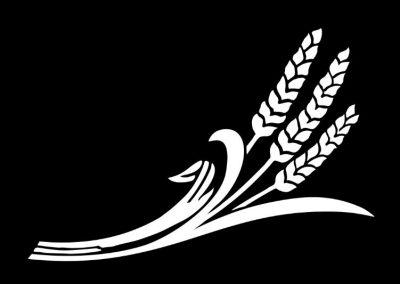 Z-THOMPSON - Wheat (7p5x5) R4